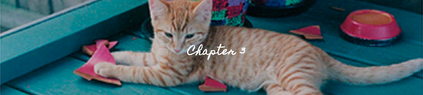 Sharon Loy Chapter 3